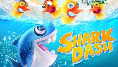Photo of Shark Dash, aiuta Squaly a ritrovare Sally rapita dalle pestifere paperelle.